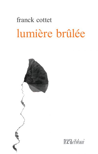 couverture LUMIERE BRULEE